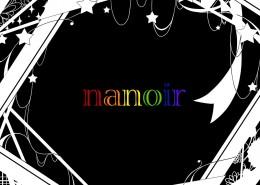 ナノ nanoir