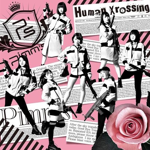 pimms_human_xrossing
